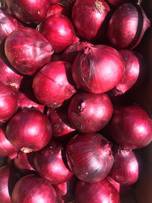 Red Onions - Agricultural Land Conservancy (2 ct)