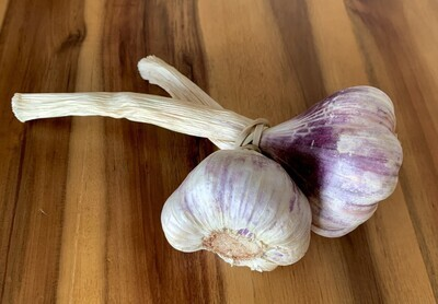 Music Garlic (2 cloves)