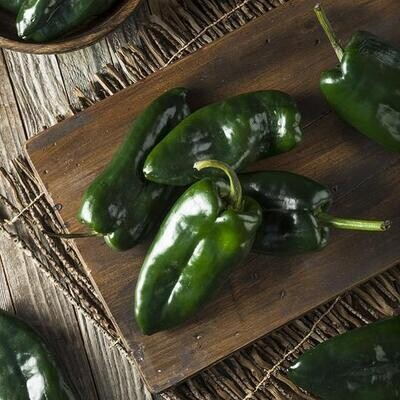 Poblano Peppers - Groundswell Farm  (1 pound)