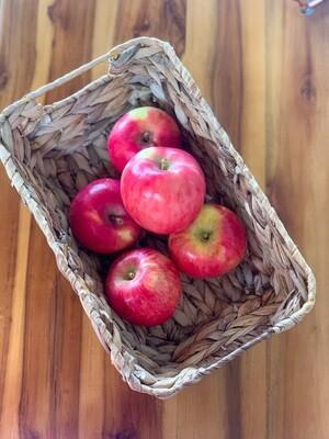 Fuji Apples - Live Earth Farm  (3 ct)