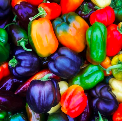 Mixed Bell Peppers - Sea to Sky (2 ct)