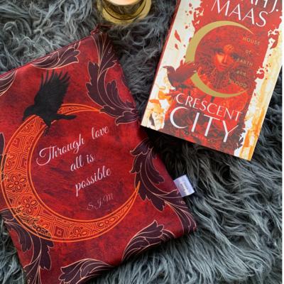 Crescent City Book sleeve