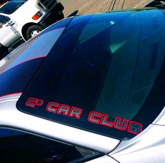 """Two Color/ Two Piece 24""""  """"In Line"""" Decal"""