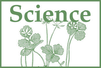 Real Science 4 Kids Intro to Biology ~ Self-paced