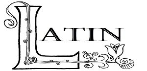 Latin 1 ~ Live Class, SECTION 1