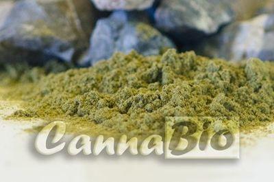 Protein konoplje (prah) - rinfuza (kilogram)
