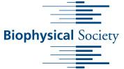 Biophysical Society Merchandise