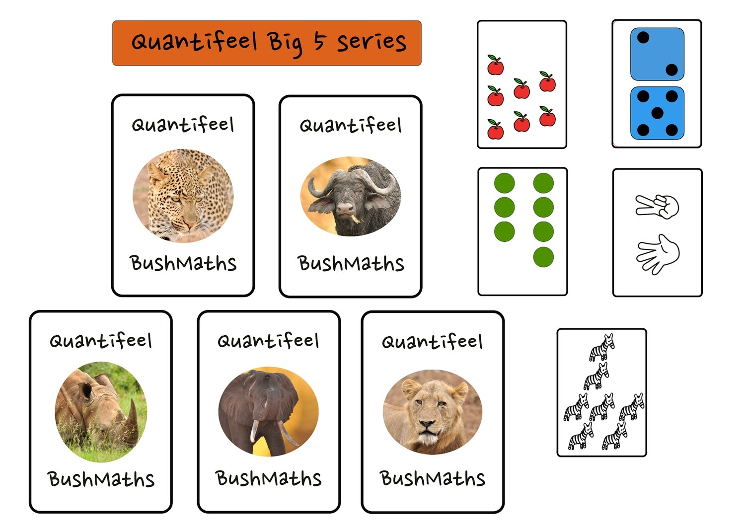 Quantifeel educational game