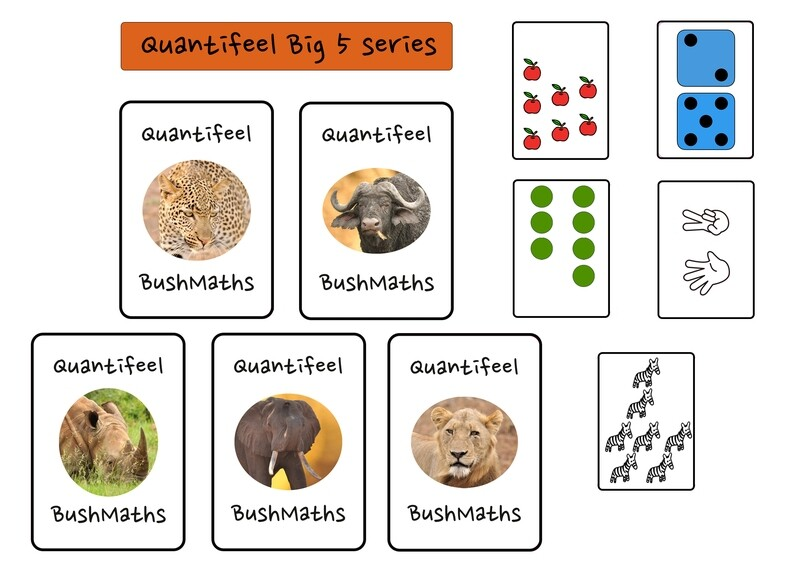 Quantifeel educational game