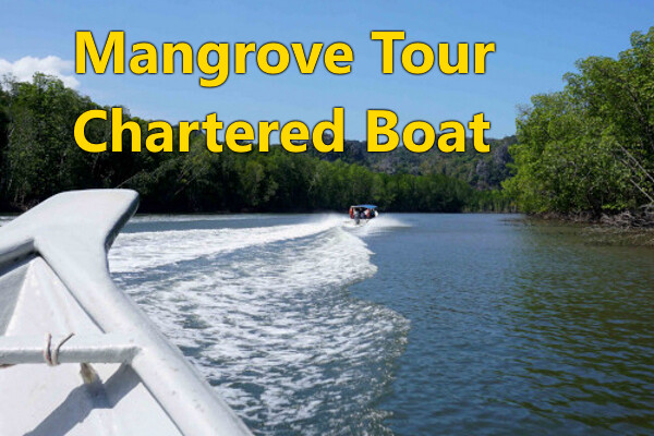 MANGROVE RIVER TOUR (Chartered Boat)