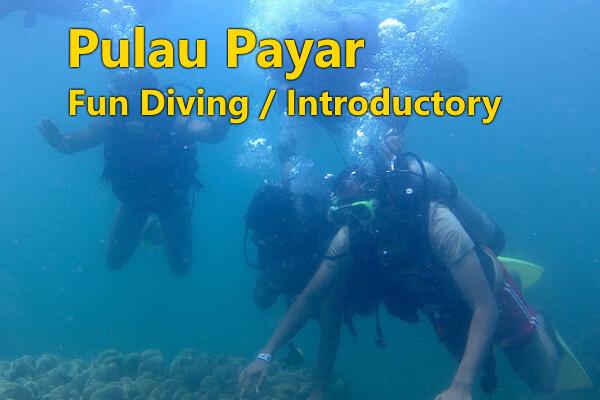 PULAU PAYAR  (Fun Diving)