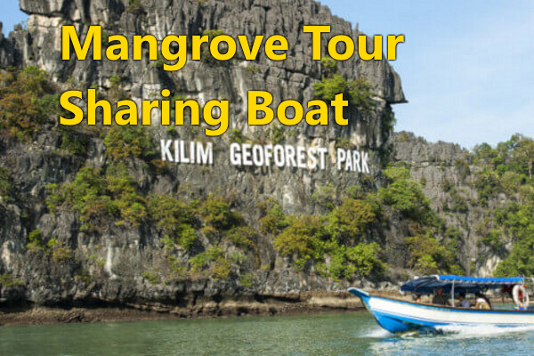MANGROVE RIVER TOUR (Sharing Boat)