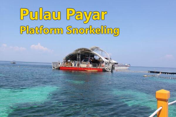 PULAU PAYAR  (Platform Snorkeling)