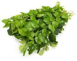 Curry leaves(fresh) 1 bunch