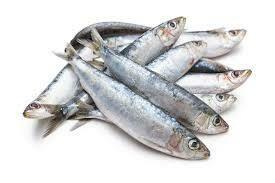 Sardines Whole Fish