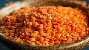 Whole Masoor Dal  4LB