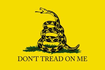 Don't Tread On Me Gadsden Flag - Yellow