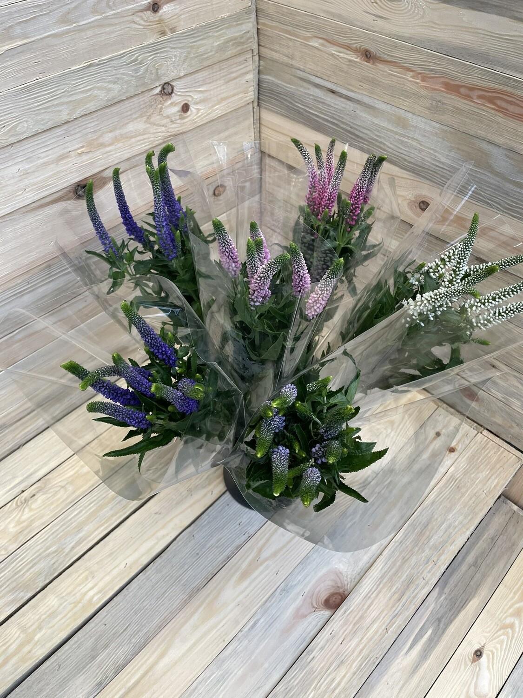 Bouquet de verónika divers 7 pièces