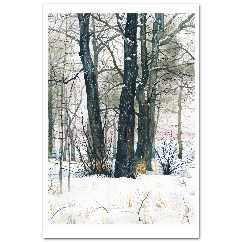 Кунеевский лес, Тольятти