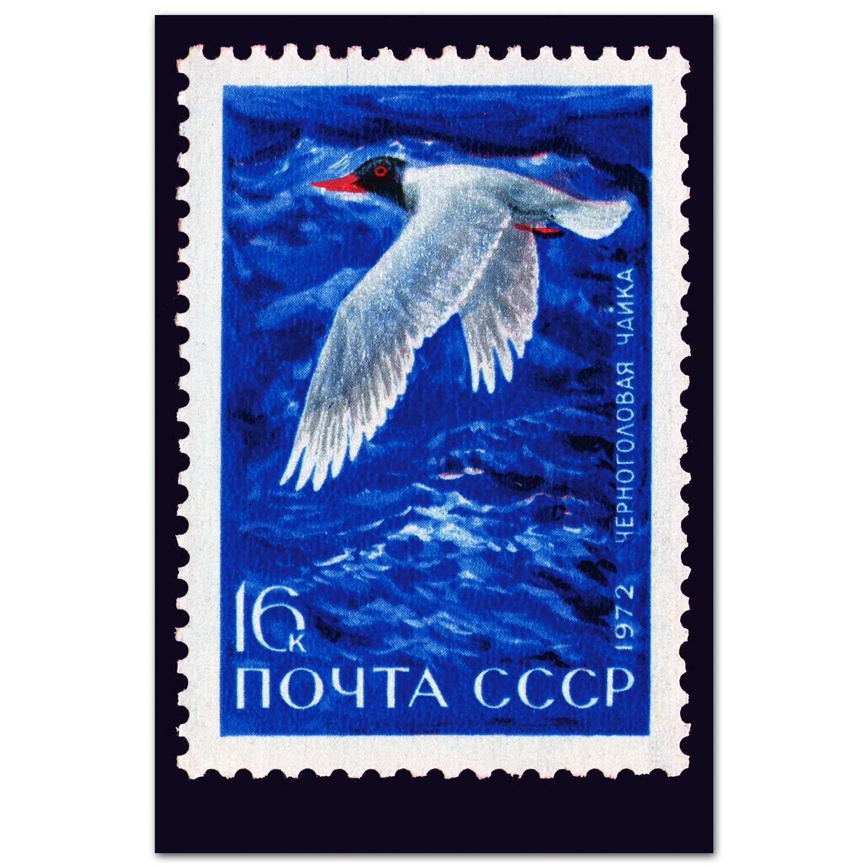 Море и чайка. Репринт марки