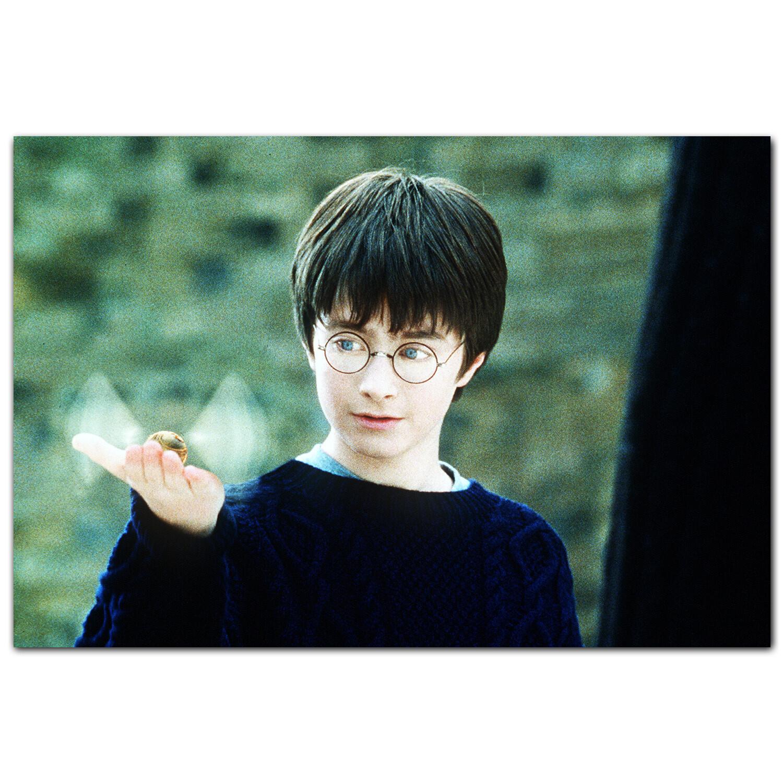 Гарри и снитч