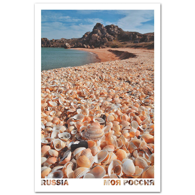 Ракушки на Генеральских Пляжах. Крым