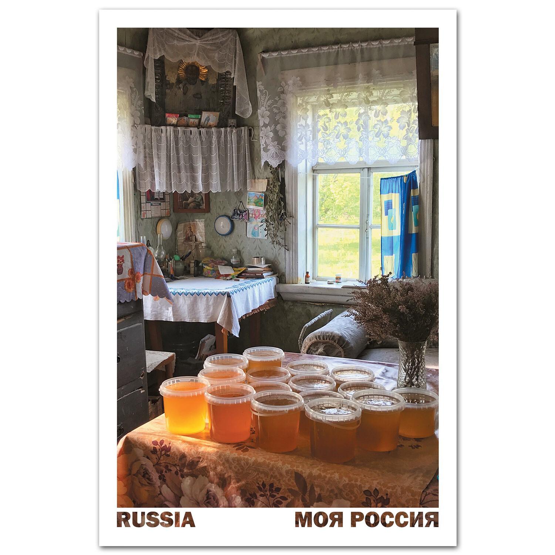 Первый майский мёд. Новгородская область