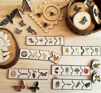 Lifecycle Puzzle (Consist of 6 puzzles)-Montessori Inspired Toy