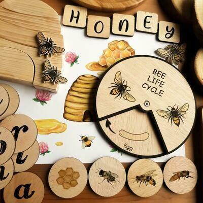 Bee Life Cycle Learning Wheel Chart-15 CM