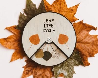 Leaf Life Cycle Learning Wheel-12 CM