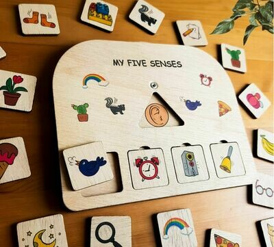 My Five Senses Sorting Activity Board