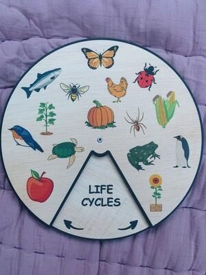 Life Cycles Wheel (15 Life Cycles)