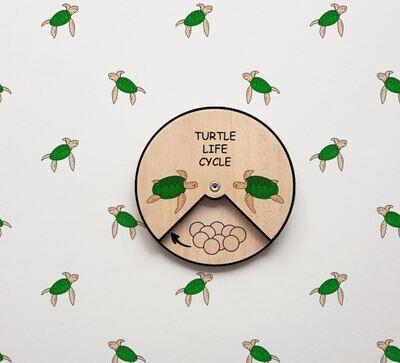Turtle Life Cycle Wheel-15 CM