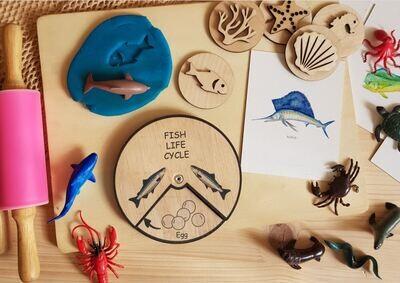 Fish Life Cycle Wheel- 15 CM