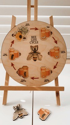 Wooden Bee Lifecycle Puzzle