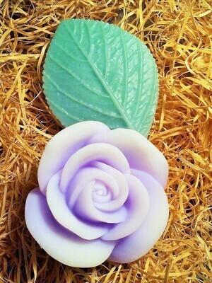 Violet with leaf