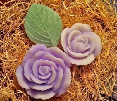 Violet couple on leaf