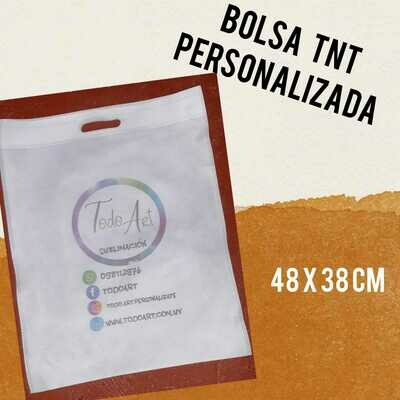 Bolsa TNT Grande 48x38cm