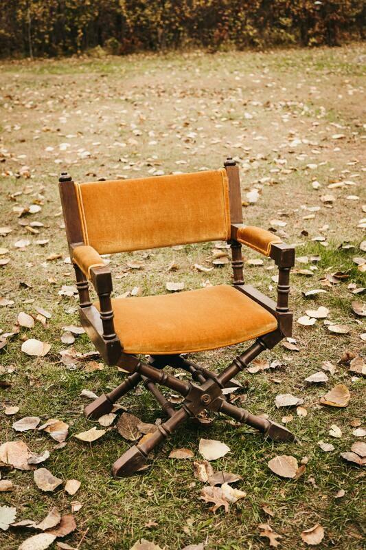 Gold Velvet Director's Chair