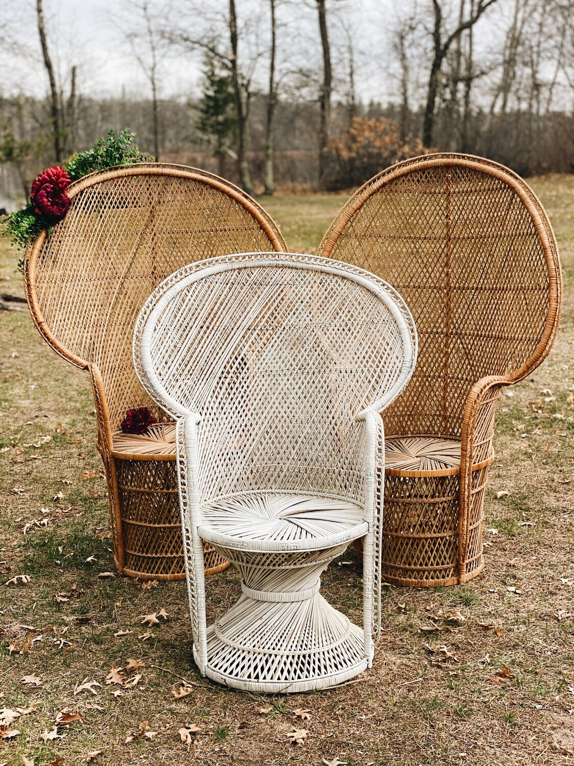 Peacock Chairs