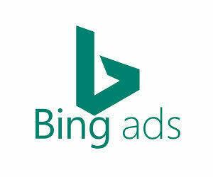 Ready To Use Bing Ads Account - Travel & Crypto CTC ready
