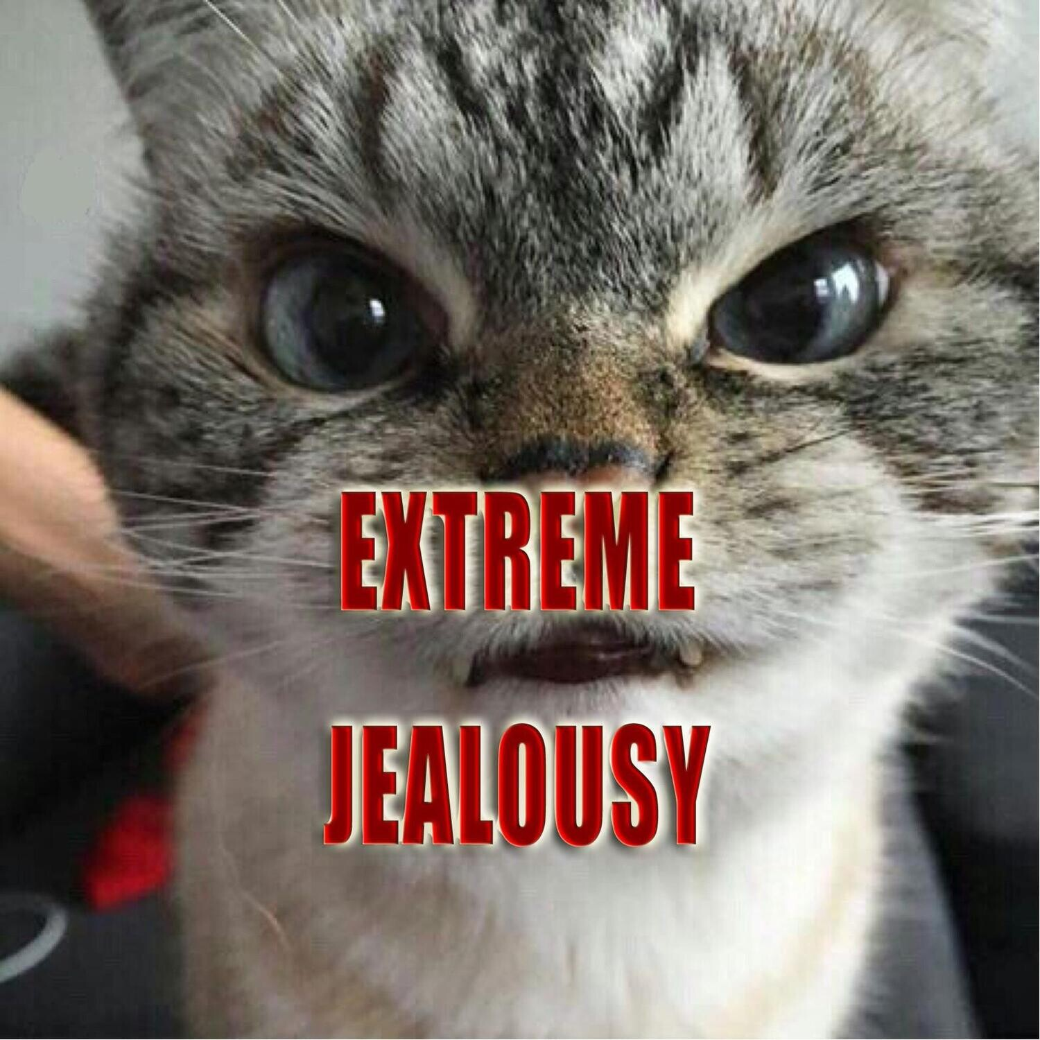 Extreme Jealousy Spell