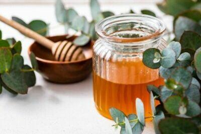 Eucalyptus Honey (Safeda)