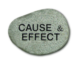 Cause & Effect Booklet