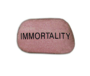 Immortality Booklet