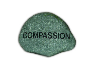 Compassion Booklet