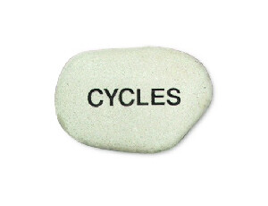 Cycles Booklet
