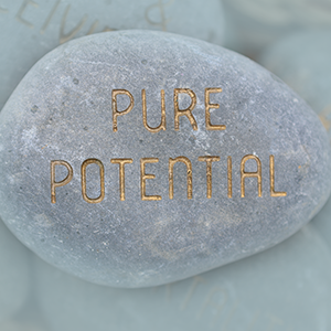 Pure Potential Booklet