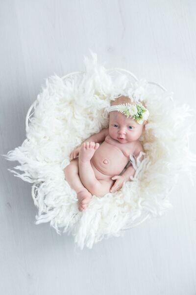 Melanie's Reborn Babies and Reborn Supplies