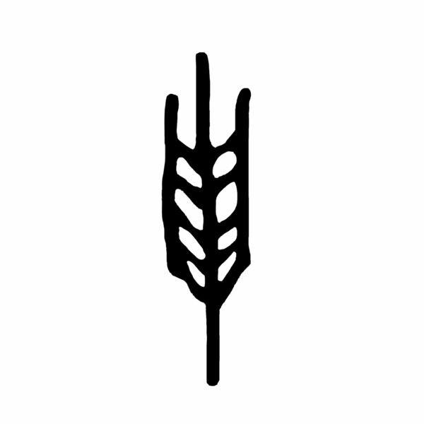 Triticum Micropanificio Agricolo